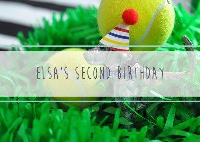 Elsa's Second Birthday